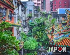 Taïpei : jungle urbaine, naturelle et spirituelle ! #TaiwanSafari #Taiwan #Taipei