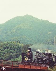 Au Pays Des Trains