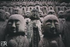 Dans le berceau du Zen