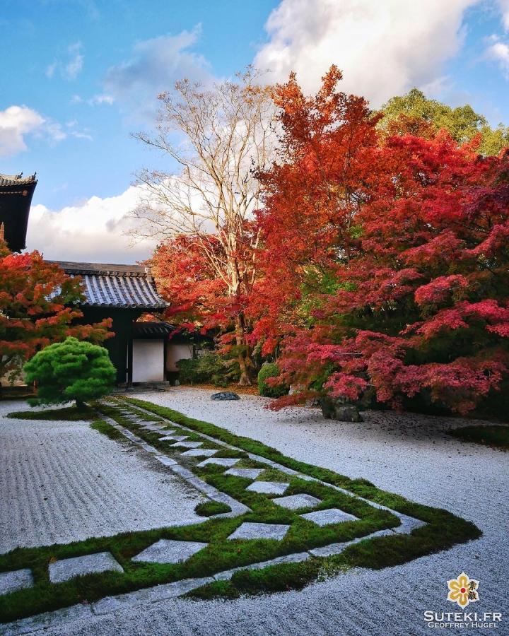 Les premières belles couleurs de l'automne #japon #kyoto #kyotosafari