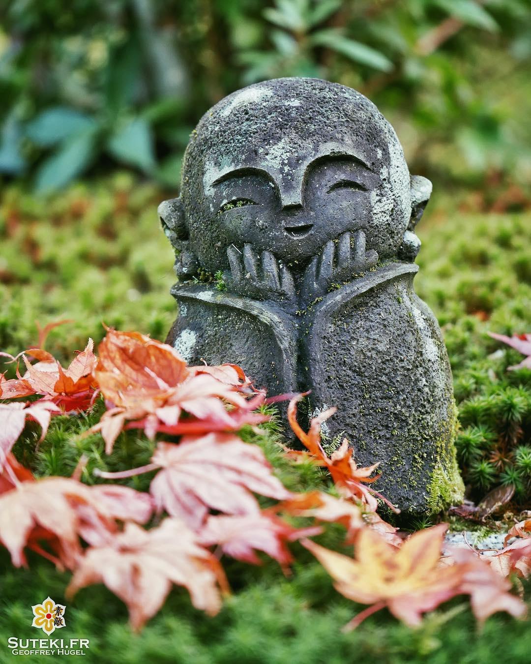 Youpi ! C'est l'automne ! #japon #kyoto #kyotosafari