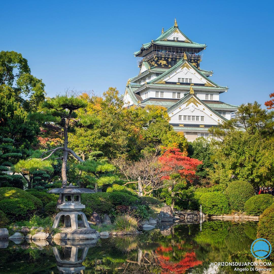 L'automne arrive sur Osaka #japonsafari #osakasafari