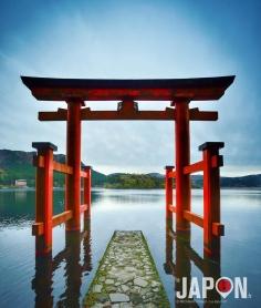 Levé tôt pour faire la photo du torii (portique) du sanctuaire Hakone Jinja ! ⛩⛩⛩ #Hakone #Ashinoko #Japon #Japan