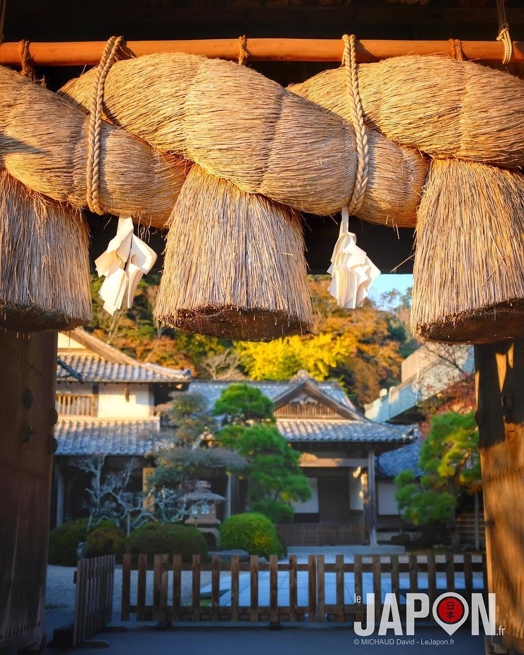 Derrière la porte du sanctuaire Izumo Taisha ! ⛩😲 #IzumoAdventures #Izumo #fujix100f