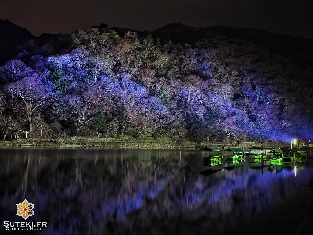 Après le rouge vient le violet #japon #kyoto