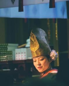 福娘 Miss Fortune  #osaka #osakasafari #japonsafari #fujifilm