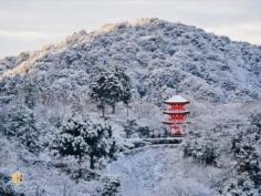 Les couleurs du Japon