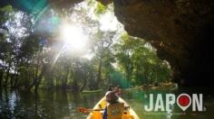 Découverte de la mangrove d'Ishigaki en canoë 🚣🏼♀️🚣🏼♀️🚣🏼♀️🌴🌴🌴