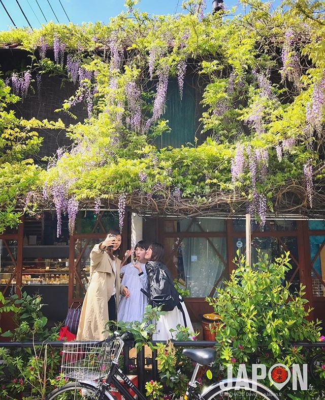 Tokyo est un jardin fleuri ! 🌳🌸