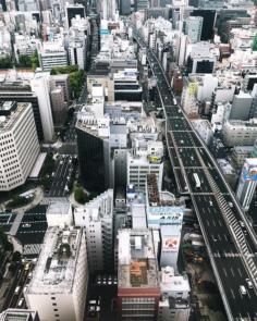 Osaka sous nos pieds  #osakasafari #japonsafari