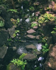 Dans la jungle d'Umeda  #osakasafari #japonsafari