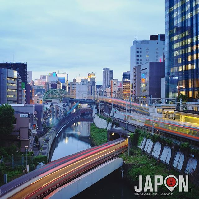 Tokyo !🗼 Mon terrain de jeu photographique peut aussi être le votre ! Découvrir/apprendre pendant mes visites #TokyoSafari 😉 #Tokyo #Japon
