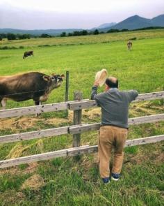 L'homme qui voulait murmurer à l'oreille des vaches 🐮