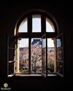 Fenêtre sur cour #japon #kyoto