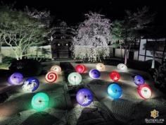 Assurément l'une des plus belles illuminations de Kyoto ! Qu'en pensez vous ? #japon #kyoto