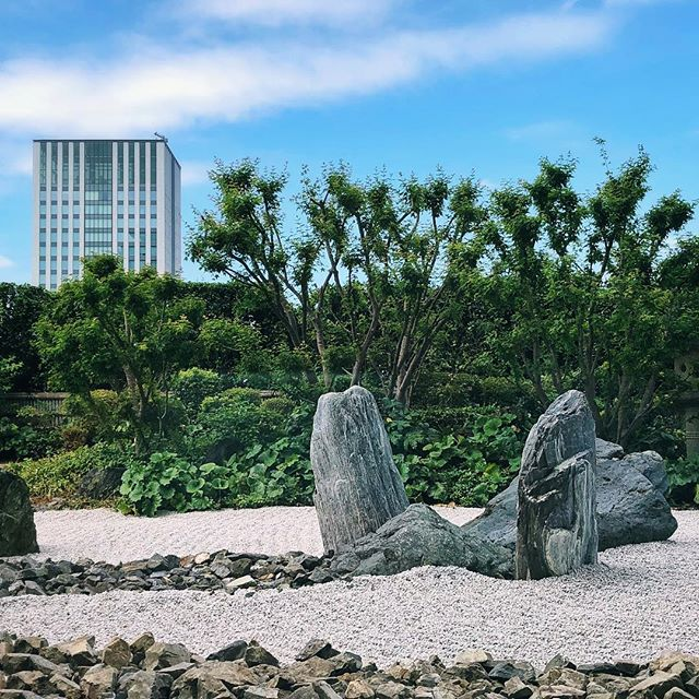 Les pierres, les monolithes  #osakasafari #japonsafari