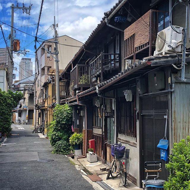 Ce Japon de tous les jours, qui résiste avec bravoure #osakasafari #japonsafari
