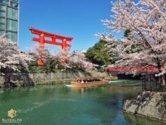 Je crois que je préfère être là plutôt que dans le bateau ! Et vous ?! #japon #kyoto