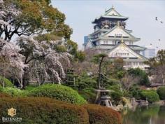 Osaka pendant les cerisiers, cela vaut aussi le coup ;) #japon #osaka