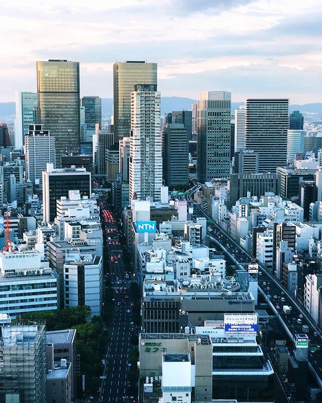 Il y a des tours presque jumelles en plein milieu d'Osaka  #osakasafari #japonsafari