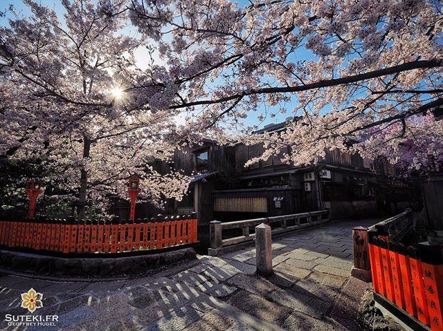 Quand tous les éléments sont réunis #japon #kyoto