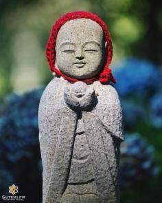 Le plein de sérénité #izumo #izumoexperience
