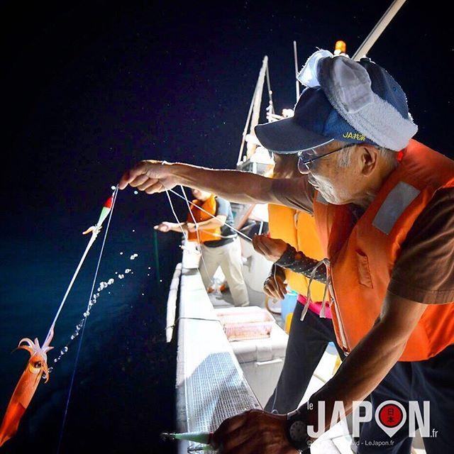 Voilà une des prises du soir pendant la pêche aux calamars 撚 Bon je vous avoue qu'au bout de 2h j'étais un peu 冷 #izumo #izumoexperience