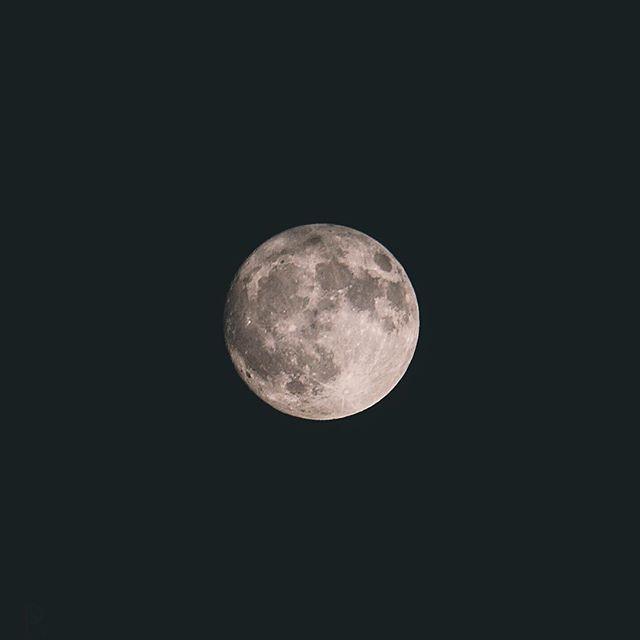 Otsukimi – Aujourd'hui au Japon, on observe la lune d'automne