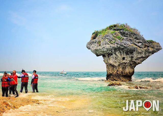 Après la montagne, l'aventure continue au bord de la mer ! #Taiwan #TaiwanSafari