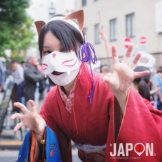 BakeNeko Matsuri de Kagurazaka ! #Tokyo #Matsuri #Japan #TokyoCameraClub #TokyoSafari