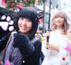 Bakeneko Matsuri @ Kagurazaka Tokyo ! 🙀 Quand les chats se transforment en humains 😼 #bakeneko #kagurazaka #Tokyo