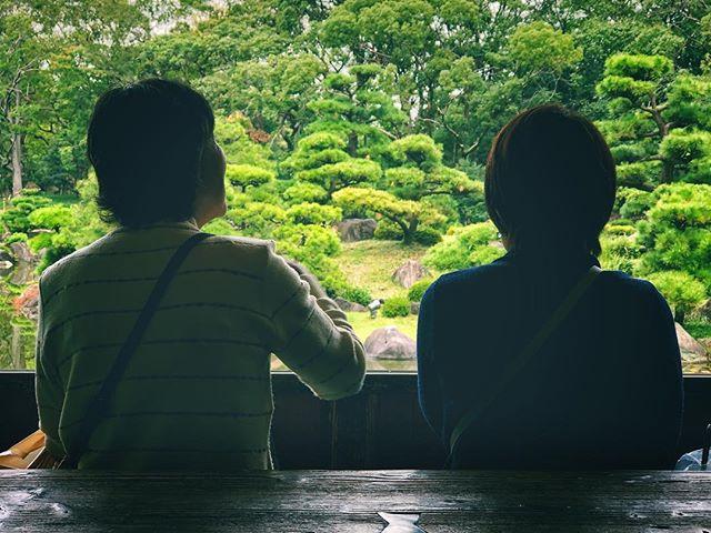 Assis face à l'écran vert #osakasafari #japonsafari