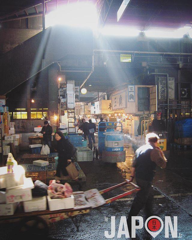 Série «Il était une fois Tsukiji» vol.1