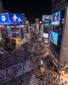 Tokyo Geometry