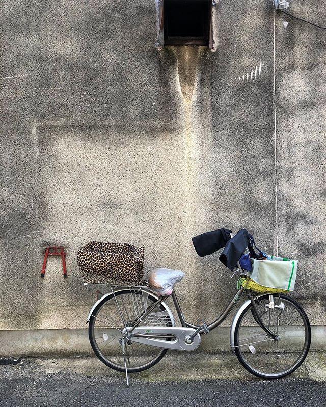 À Osaka, les mamies à vélo des quartiers populaires cultivent la classe jusque dans leur panier :) #osakasafari #japonsafari  #osaka #大阪 #大阪観光 #discoverosaka  #streetshootjapan #japanese_retro