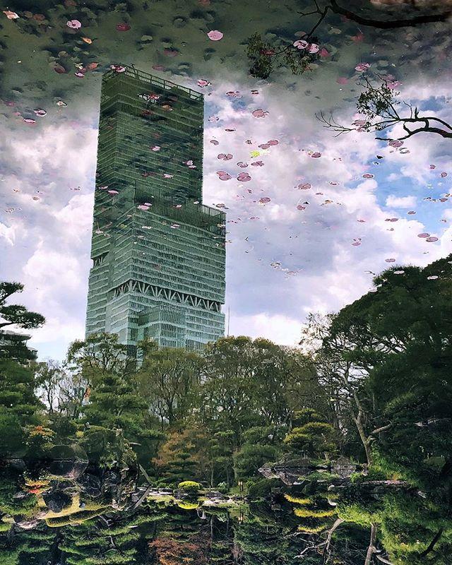 Un de mes classiques photographiques :) #japonsafari #osakasafari #abenoharukas  #osaka #大阪 #大阪観光 #discoverosaka