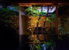 Quand un architecte ou artisan fait bien son travail, le photographe n'a pas grand chose à faire :) #discoverkyoto