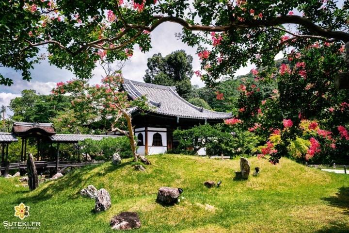 On entend de plus en plus parler de la surfréquentation des grands temples de Kyoto.  Heureusement, parmi les sites connus de la ville, il y en a certains qui sont relativement tranquilles !  Typiquement, je trouve que l'affluence d'un temple comme le Kodai-ji est finalement assez modérée !  Jamais vraiment seuls, mais on ne se marche pas sur les pieds pour autant (sauf les soirs de nocturne et d'érables rouges !) On peut donc profiter très facilement d'un instant de calme, et bien sûr de magnifiques jardins ! . . . . . #kyotojapan #kyotogram #kyotolove #fujifilmglobal #japanesegarden #japanesetemple #kodaiji #beautifulkyoto #ilovekyoto #visitjapanjp #visitjapanfr #discoverjapan #discoverkyoto #そうだ京都行こう #京都 #京都旅 #京都好き #日本を休もう #京都カメラ部