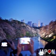 Il va faire beau aujourd'hui sur Tokyo, la guerre des Sakura va pouvoir reprendre !