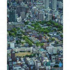 L'urbanisme grandit et finit par encercler totalement les lieux chargés d'histoire