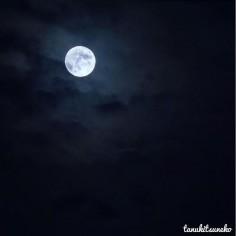 Mystic Blue Moon