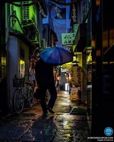 Une soirée en compagnie de la pluie