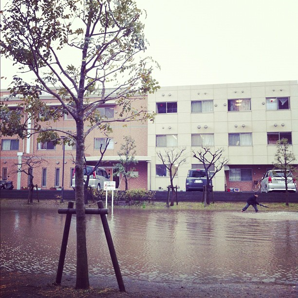 Il pleut non-stop et ce qui paraît être une marre est un terrain de jeu…