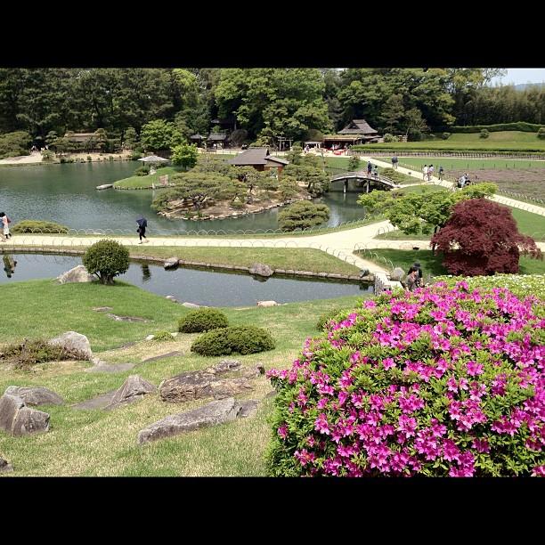 En direct du Korakuen d'Okayama