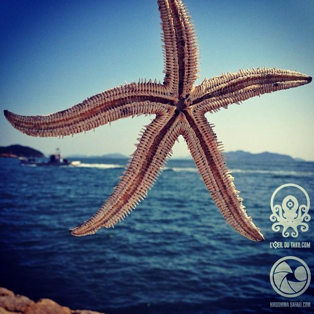 Un dimanche au bord de la mer intérieure du Japon. Et vous ?