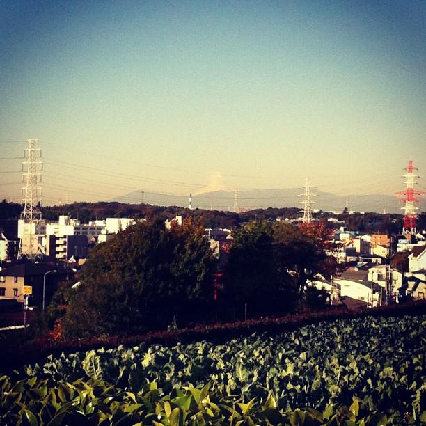 #fujireport : le Fuji San fume ce matin ! Début d'éruption ? Ou simple nuage ?