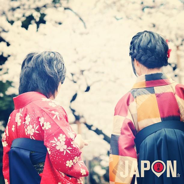Megumi & Maiko chan admirent les Sakura en attendant leurs amies.