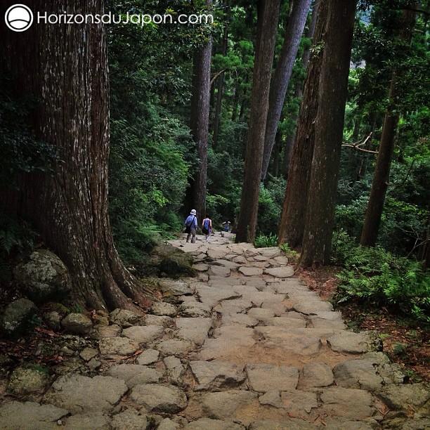 Je réalise enfin le rêve de marcher sur le chemin de pèlerinage de Kumano