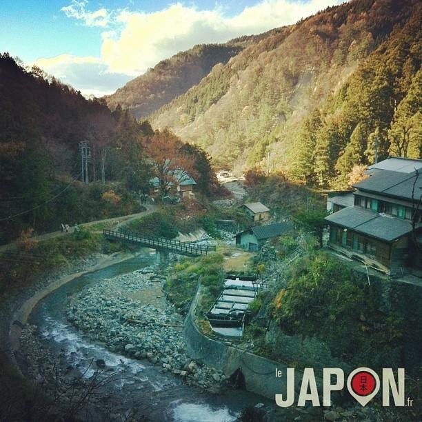 Dans la vallée aux singes de Yamanouchi (Nagano)