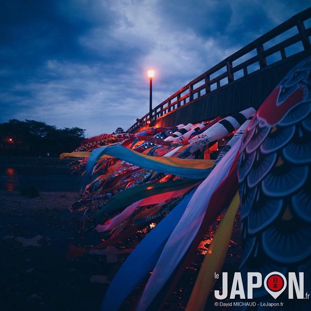 Ma contribution Koïnobori du moment à Kanazawa ! #koinobori #kanazawa
